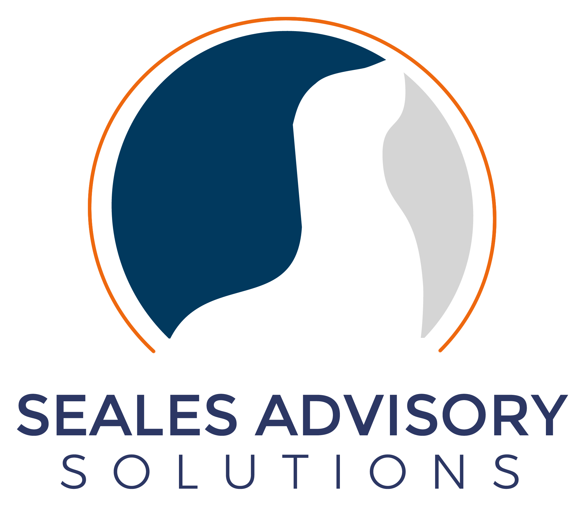 Seales Advisory Solutions Project